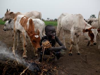 南苏丹平静的乡村生活14