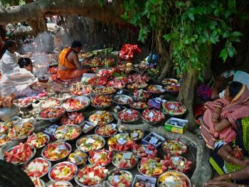 孟加拉妇女的榕树崇拜04