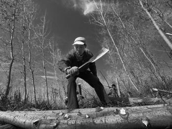 洞庭伐木人