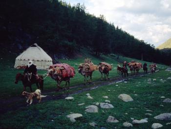 哈萨克族牧民的转场10