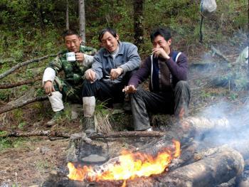 硗碛藏族剪牛毛12