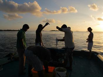 马尔代夫的渔业