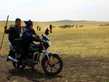 蒙古族春季打马印10