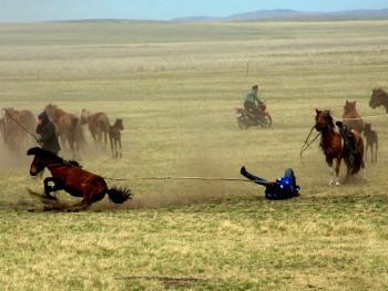 蒙古族春季打马印06