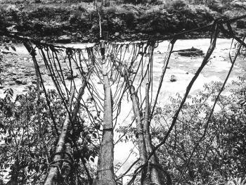 独龙江的桥10