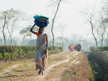 头顶上的孟加拉10