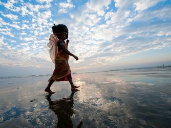 头顶上的孟加拉