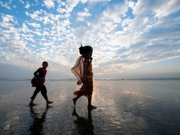 头顶上的孟加拉02