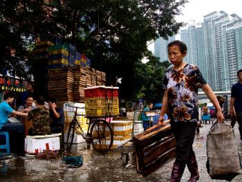 广州黄沙水产批发市场