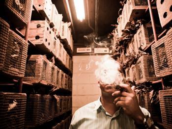 多米尼加雪茄13
