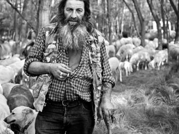 意大利北部的牧羊人05