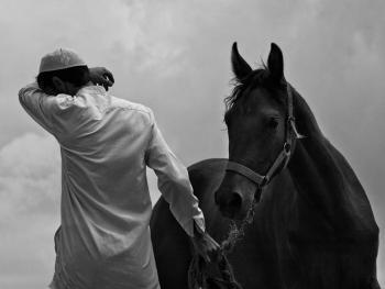 土库曼人和马13