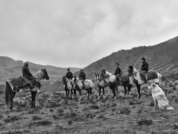土库曼人和马07