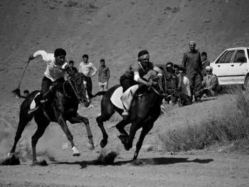 土库曼人和马09