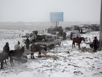 冬季里的马市