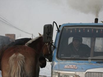 冬季里的马市09