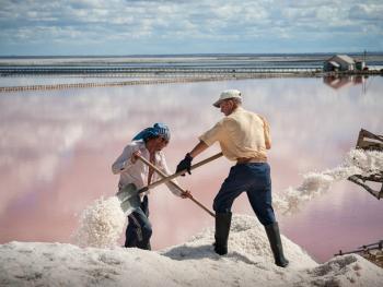 锡盐的生产加工11