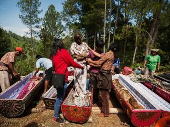 托拉雅人扫墓仪式07