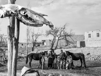 马与伊朗的土库曼人04