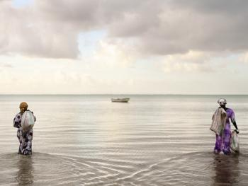 坦桑尼亚的海藻收获01