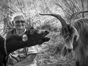 葡萄牙牧羊人的生活10