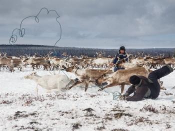 科米共和国的游牧民族10
