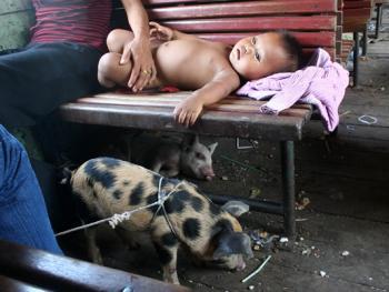 柬埔寨的火车之旅
