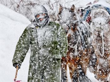 中国哈萨克族牧民的冬牧场生活