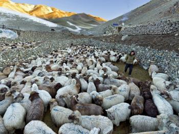 中国哈萨克族牧民的冬牧场生活01