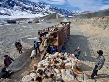 中国哈萨克族牧民的冬牧场生活07