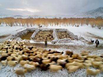 中国哈萨克族牧民的冬牧场生活09