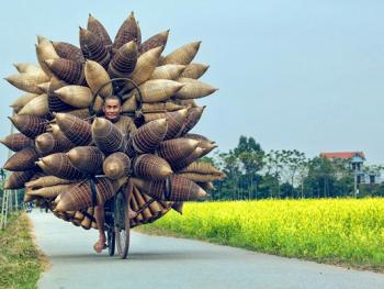 越南编鱼篓12