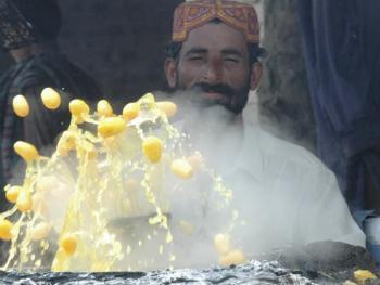 巴基斯坦椰枣初加工10