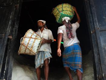 孟加拉制盐10