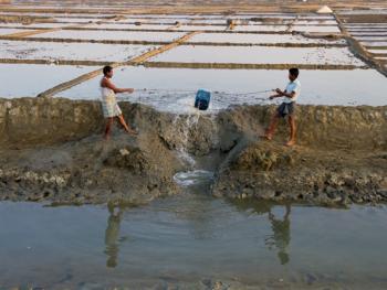 孟加拉制盐03