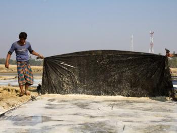 孟加拉制盐04