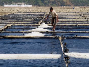 孟加拉制盐06