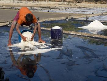 孟加拉制盐07