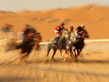 阿联酋动物赛跑06