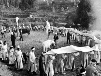 水族葬礼12