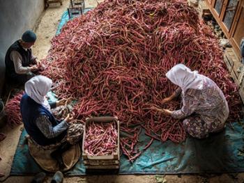 乌鲁达山村的传统生活07