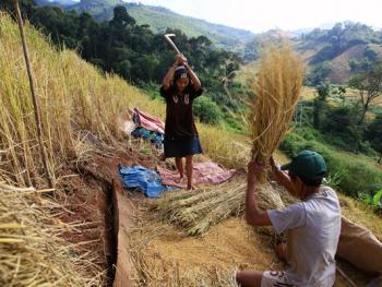 老挝的阿卡部落05