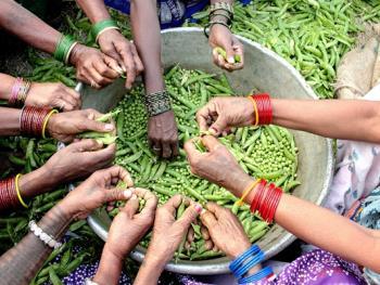 印度乡村妇女的劳作13
