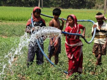 印度乡村妇女的劳作03