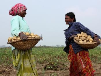 印度乡村妇女的劳作06
