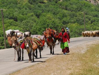 伊朗游牧民族的生活习俗06