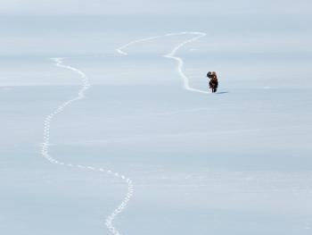 阿勒泰山的哈萨克猎鹰人11