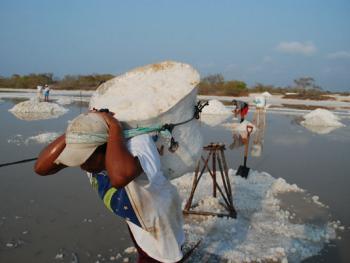 墨西哥制盐10