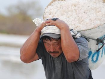 墨西哥制盐07