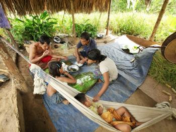 孟加拉部落的刀耕火种11